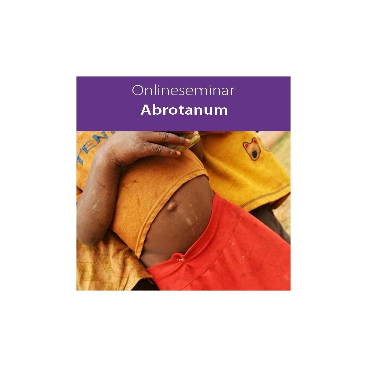 Online-Seminar Fachseminar in klassischer Homöopathie Abrotanum in all seinen Facetten