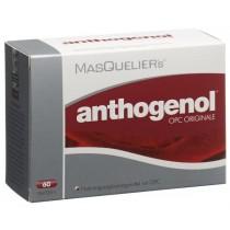 MasQuelier's Anthogenol OPC ORIGINALE (Spezialpreis gültig solange Vorrat; Verfall 5/2020)