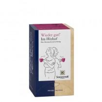 Aromalife Wieder gut! Im Wechsel der Zeit Tee Btl. à18