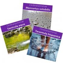 Online-Seminare Gesamtpaket: Mercurius solubilis, Tarentula hispanica und Sanicula aqua
