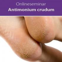 Online-Seminar Fachseminar in klassischer Homöopathie Antimonium crudum in all seinen Facetten