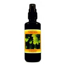 Sanaisha Baum Duft Spray Fichte 50ml