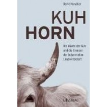 David Hunziker, Kuh Horn