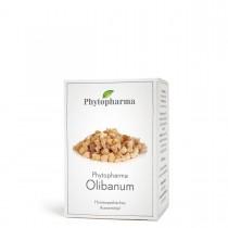Phytopharma Olibanum 120 Tbl