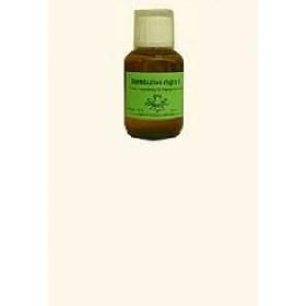 Teucrium marum (Katzengamander) Dilution 100ml D6