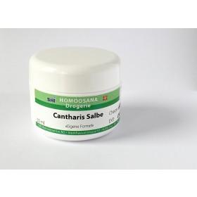 Cantharis Salbe 50g
