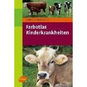 Hofmann Winfried, Rinderkrankheiten