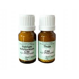 Homöosana homöopathisches Kräuselkrankheit-Set