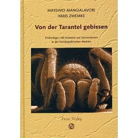 Mangialavori Massimo, Von der Tarantel gebissen