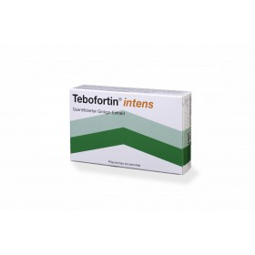 Tebofortin intens 120 mg 90 Tbl